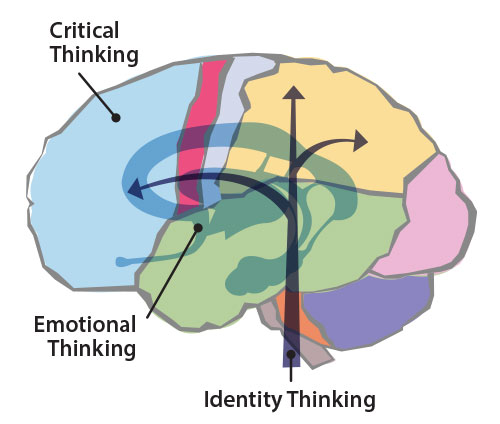 Emotional Thinking in the Brain